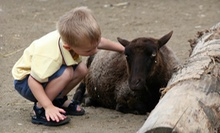 $248 for $450 Worth of Petting-Zoo Visits at Kid's Corral