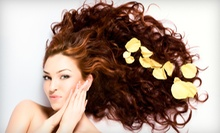 Haircut and Style with Option of Partial Highlights or Full Color at Aqua Salon (Up to 62% Off)