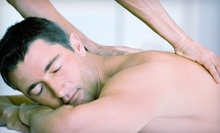 $39 for Chiropractic Exam, Adjustments, and Vibrocussion Massage at Spinal Decompression Center of Colorado ($200 Value)