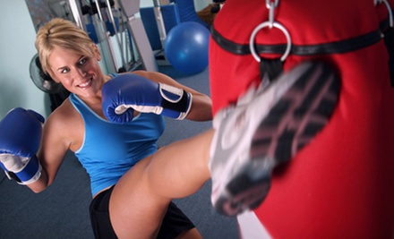 10 or 20 Kickboxing Classes with Gloves at Premier Martial Arts (Up to 87% Off)