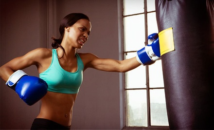 10 or 20 Boot-Camp and Kickboxing Classes at Women's Boot Camp Fitness (Up to 71% Off)