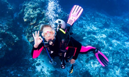 Scuba Certification Class with Optional Checkout-Dive Gear Rental at Dive West (Up to 38% Off)