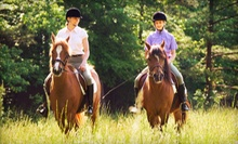 Mini Horseback-Riding Lesson and Private Trail Ride for One or Two at Fruition Farm (Up to 63% Off)