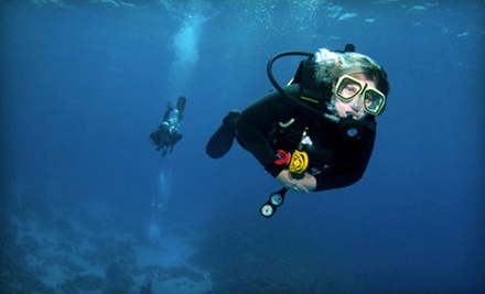 Discover Scuba Class or PADI Open-Water Scuba Course at Enfield Scuba and Watersports LLC (Up to 51% Off)