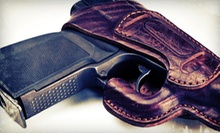 Handgun-Safety and Concealed-Weapon-Permit Training for One, Two, or Four at Plant City Gun Range (Up to 70% Off)