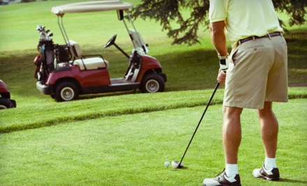 Golf-Swing Evaluation and Instruction at The Golf Academy/LA (Up to 74% Off). Three Options Available.