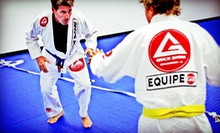 10 Brazilian Jiujitsu Classes or One Month of Unlimited Brazilian Jiujitsu Classes at Gracie Barra (Up to 77% Off)
