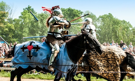 $13 for One Adult Ticket to the Ohio Renaissance Festival ($21.95 Value)