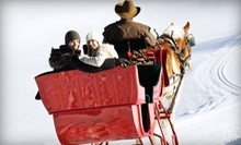 Horse-Drawn Sleigh or Carriage Ride for Two or Four from Ma & Pa's (Up to 51% Off)