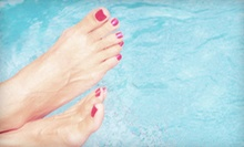 Two or Three Spa Pedicures with a Mango Scrub with Christina at Gina Camaj Salon (56% Off)