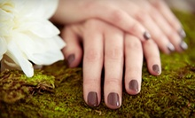 One or Two No-Chip Manicures from Nails by Dany at Wicked Salon (Up to 58% Off)