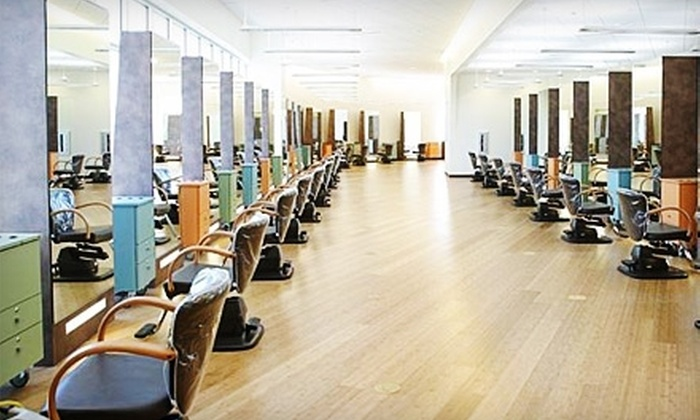 Aniu salon spa madison deal of the day groupon madison for Act one salon salem nh