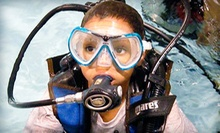 Open-Water-Certification Program with Quarry Dives or Scuba-Discovery Class at Central Coast Dive Center (Up to 57% Off)