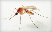 One or Two Mosquito Treatments from Dart Pest Control (Up to 61% Off)