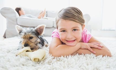 Carpet Cleaning from Pristine Carpet Cleaning (Up to 53% Off). Five Options Available.