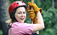 $35 for a Zipline Tour for One at Ocoee Zipz ($79 Value)