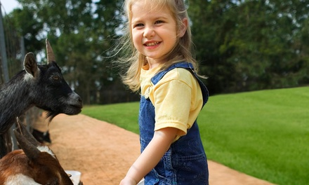 $35 for Two Petting Farm Fun Passes and Two Souvenir Feed Cups at Hunt Club Farm ($60 Value)
