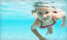 Eight Small-Group Swim Lessons for One or Two with Registration Fees at The Dive Shop (Up to 60% Off)