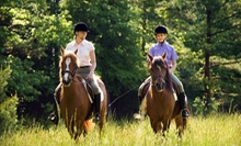 $65 for a Semiprivate Horseback-Riding Lesson or Horseback Trail Ride for Two at Seaton Hackney Stables ($130 Value)