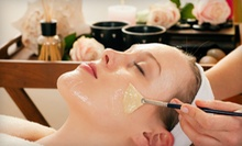 One or Three Deluxe Organic Facials or Fruit-Enzyme Peels at Believe Day Spa in Tampa (Up to 58% Off)