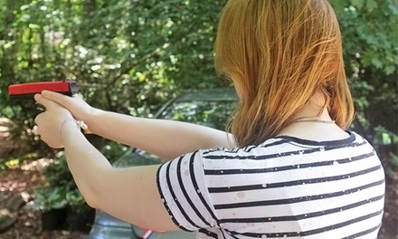 $50 for an NRA Pistol-Marksmanship Simulator Training at North Georgia Firearms Training ($95 Value)