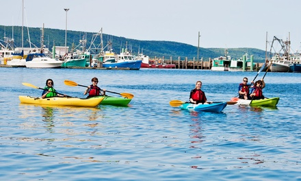 Half- or Full-Day Single or Double Kayak Rental from Fundy Complex (49% Off)