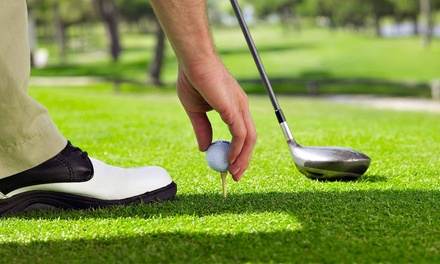 18-Hole Round of Golf for Two or Four with Cart Rental at Ann Arbor Country Club (Up to 60% Off)