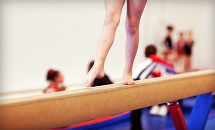 Four- or Five-Day Gymnastics Summer Camp at Academy of Sport and Fitness (51% Off). Nine Dates Available.