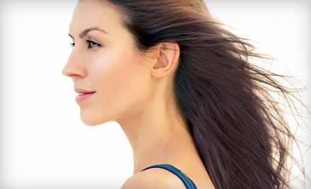Haircut and Keratin Treatment, or Condition, Color, and Blow-Dry at Wild Hare Salon & Spa (Up to 60% Off)