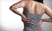 Chiropractic Packages with One or Three Adjustments at Back In Health Chiropractic and Wellness Center (Up to 90% Off)