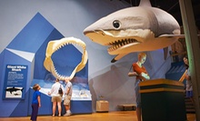Visit for Four or Six Including Special Exhibit Passes to the South Carolina State Museum (Up to 61% Off)