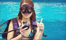 Discover Scuba Class or an Open-Water Scuba-Diving Beginner Course from Scuba Network (Up to 52% Off)