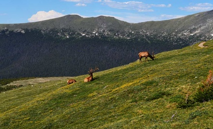 2-Night Stay in a Cabin at Daven Haven Lodge in Grand Lake, CO. Combine Up to 8 Nights.