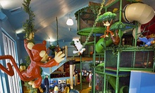 $6 for a Drop-in Visit for One Child Aged 3–12 at Monkey Mountain (Up to $12.99 Value)