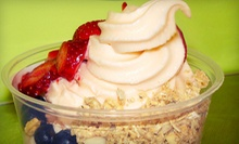 $10 for $20 Worth of Frozen Yogurt, Smoothies, and Milkshakes at YoGo Station in Oak Park