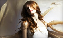 Haircut and Keratin Conditioning Treatment with Options for Color or Highlights at The Glamaholic (Up to 65% Off)