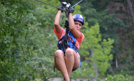 $ 44 for a Zipline Tour at Valley Zipline Tours ($ 89.99 Value)