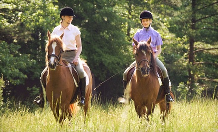 Mini Horseback-Riding Lesson and Private Trail Ride for One or Two at Fruition Farm (Up to 56% Off)