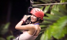 Four Zipline Rides for One or Two People or Daredevil Package at Woodbury Ski Area (Up to 54% Off)