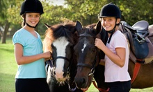 Two or Four 60-Minute Horseback-Riding Lessons at Crossroads Farm (61% Off)