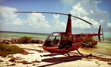 6- or 12-Mile Helicopter Flight for Up to Three from Timberview Helicopters (Up to 51% Off)
