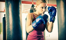 Two Weeks or One Month of MMA Fitness Classes, or 10 Boxing or Kickboxing Classes at Tigers World Tampa (Up to 68% Off)