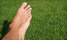 $349 for Laser Toenail-Fungus Removal for Up to 10 Toes from Dr. Thomas Rambacher at Podiatry Hotline ($1,000 Value)