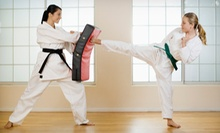 $34 for $75 Worth of Martial-Arts Classes at Journey - Martial Arts