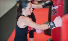 Two Weeks or One Month of Unlimited Cardio Krav Classes with Boxing Gloves at Krav Defense (Up to 87% Off)