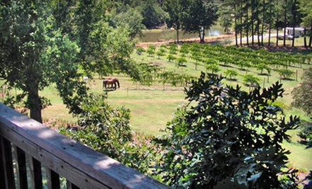 Winery Tour with Tasting a Glass of Wine and Souvenir Glasses for Two or Four at Treehouse Vineyards (Up to 74% Off)
