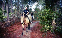 60-Minute Horseback Trail Ride for Two or Four at Equestrian Quest Stables (Up to 52% Off)