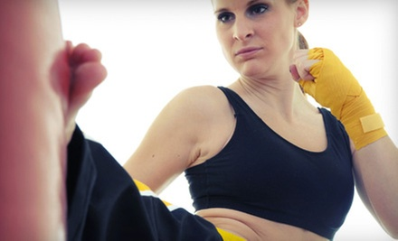 5 or 10 Drop-In Muay Thai Burnout Fitness Classes at Premier Mixed Martial Arts (Up to 81% Off)