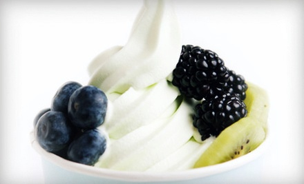 $10 for a $20 Worth of Self-Serve Frozen Yogurt at Bloomberry