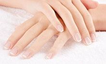 Manicure and Spa Pedicure, or Shellac Mani-Pedi with Optional Hydrating Treatment at Who Does Your Hair (Up to 55% Off)